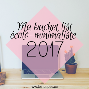 Ma bucket list écolo-minimaliste 2017